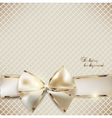 Holiday ribbon background vector