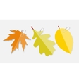 Shiny autumn natural leaves label with clip vector