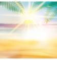 Grunge palm background vector