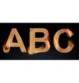 Burning letters abc vector