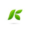 Letter k eco leaves logo icon design template vector