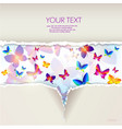 Colorful butterfly background vector