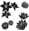 Black flower design elements vector