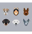 Dog face portrait flat icon set vector