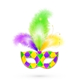 Mardi gras traditional colors mask vector