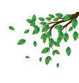 Green leaves tree branch3 vector