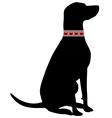 Dog flea collar vector
