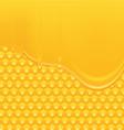 Honey background 2 vector