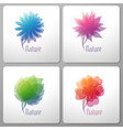 Nature - elements for design vector