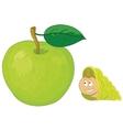Snail on apple vector