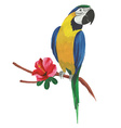 Isolated watercolor parrot with tropical flowers vector