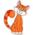 Cute cat cartoon vector