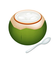 Coconuts jelly in coconut shell vector