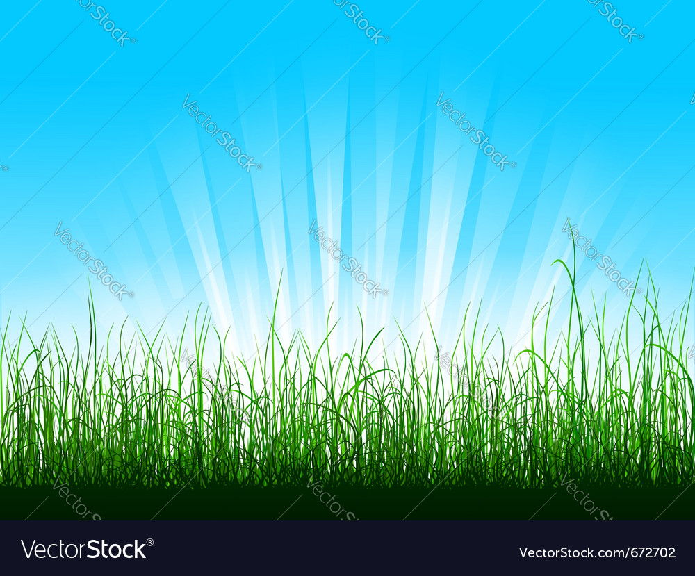 Green grass over blue sky with sunbeams vector | Price: 1 Credit (USD $1)