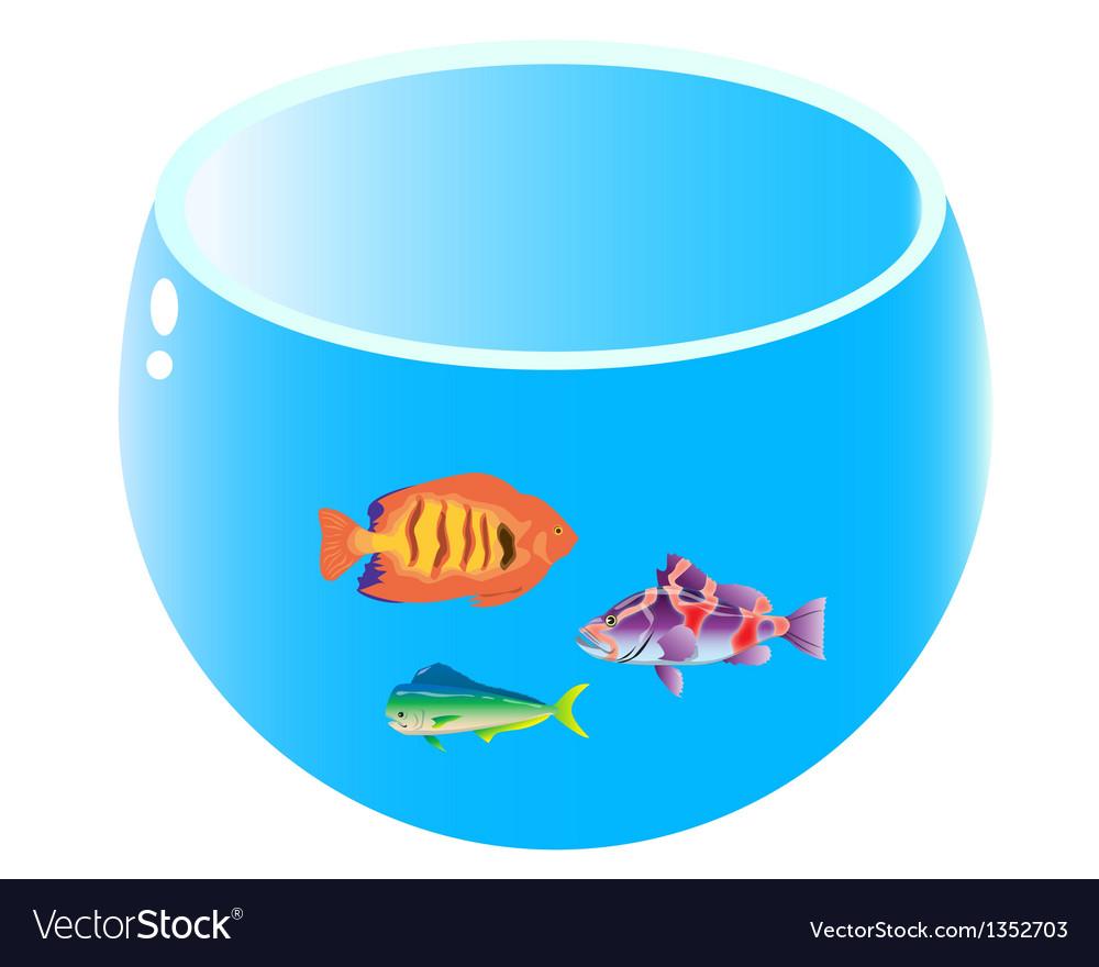 Home aquarium with three fish vector | Price: 1 Credit (USD $1)
