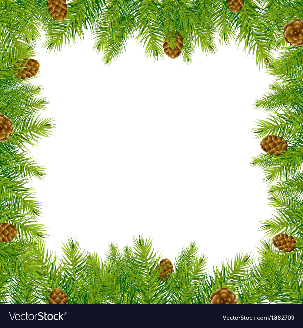 Frame with christmas tree and pine cone vector | Price: 1 Credit (USD $1)