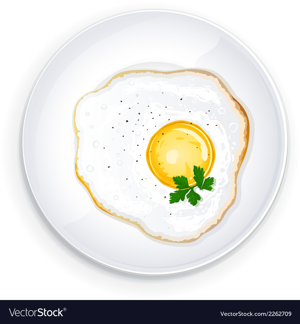 Omelette on a plate with parsley leaflets vector | Price: 1 Credit (USD $1)