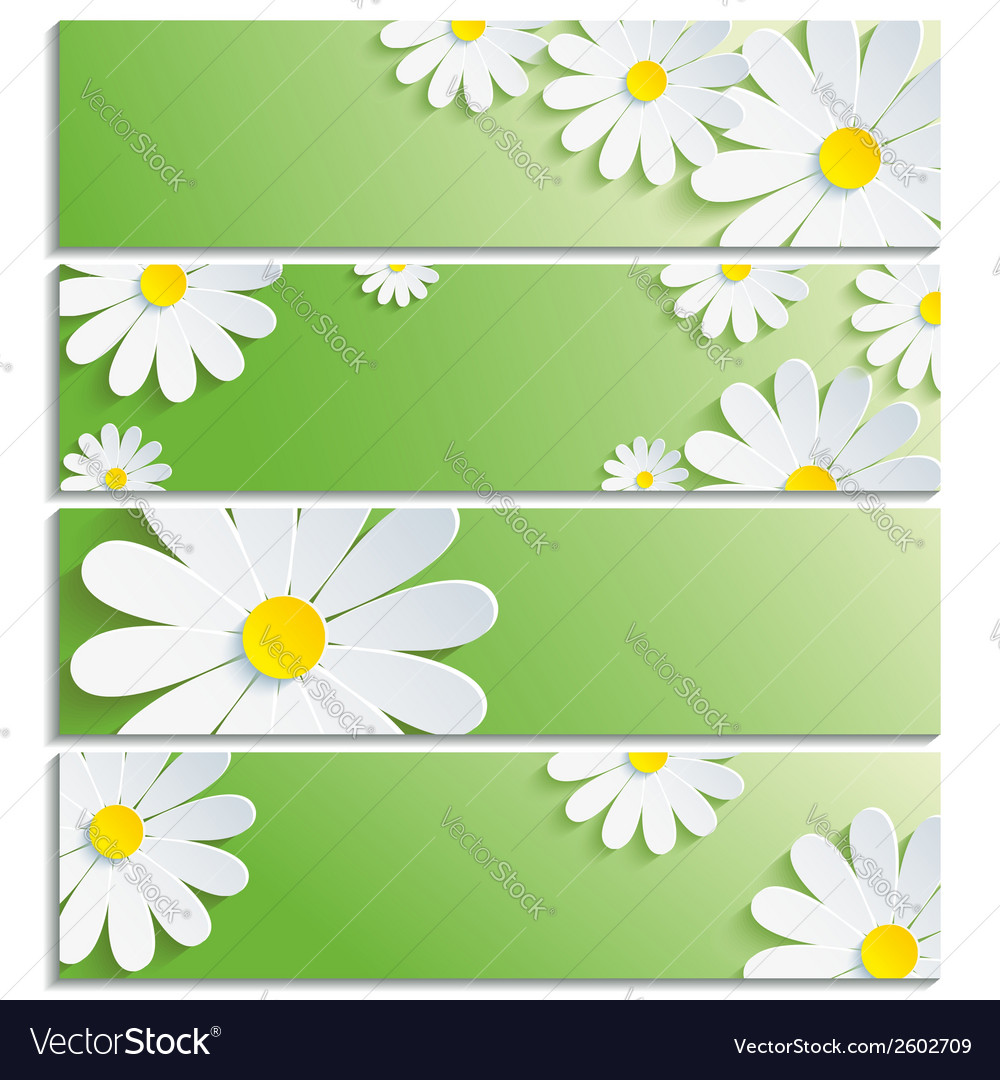 Set of eco banners with 3d flower chamomile vector | Price: 1 Credit (USD $1)
