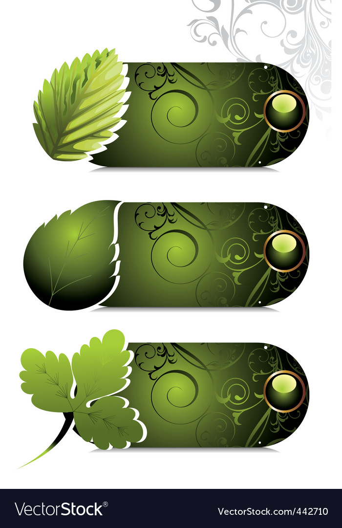 Card design with stylized leaf vector | Price: 1 Credit (USD $1)