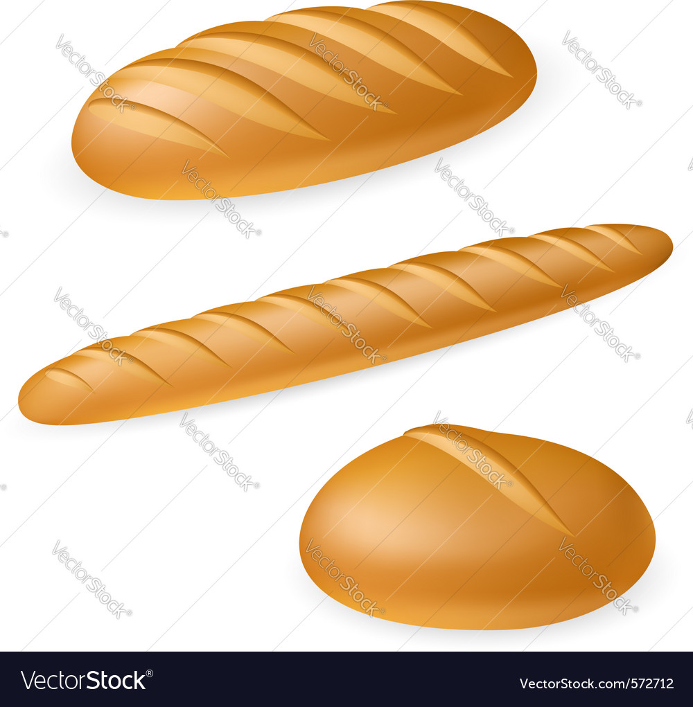 French style bread vector