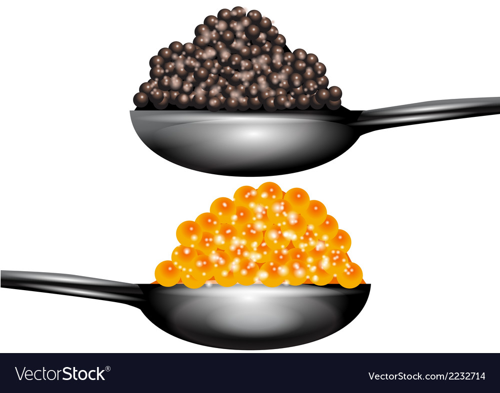Caviar vector | Price: 1 Credit (USD $1)