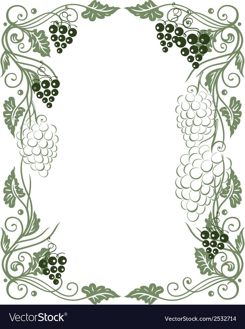 Grape vines vector | Price: 1 Credit (USD $1)