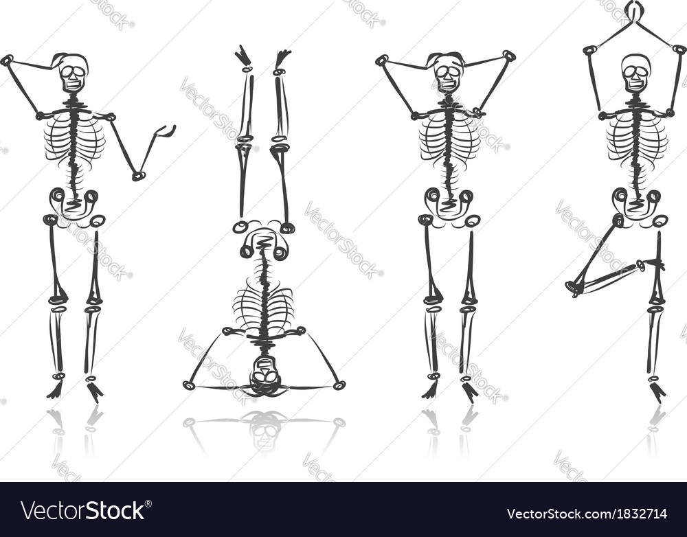 Skeleton sketches for your design vector | Price: 1 Credit (USD $1)