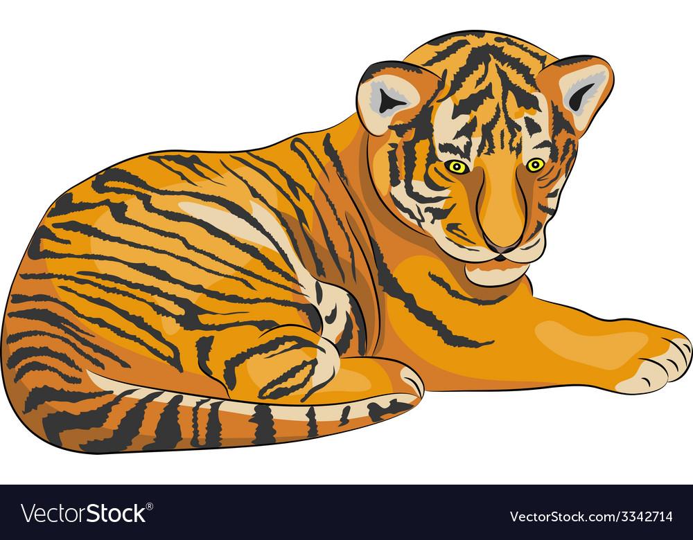Tiger a vector | Price: 1 Credit (USD $1)