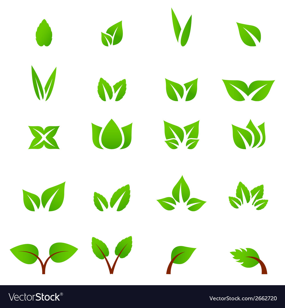 Eco icon green leaf vector | Price: 1 Credit (USD $1)