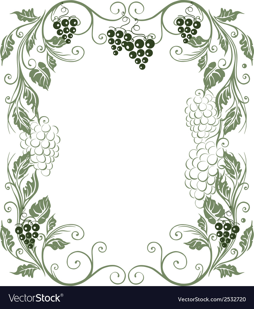 Grape vines vector | Price: 1 Credit (USD $1)
