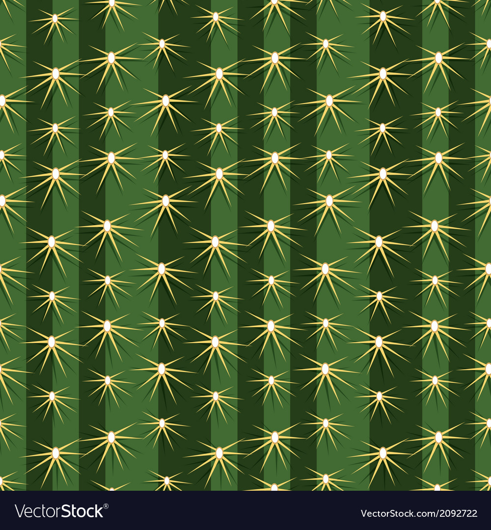 Cactus cacti plant texture seamless pattern vector | Price: 1 Credit (USD $1)