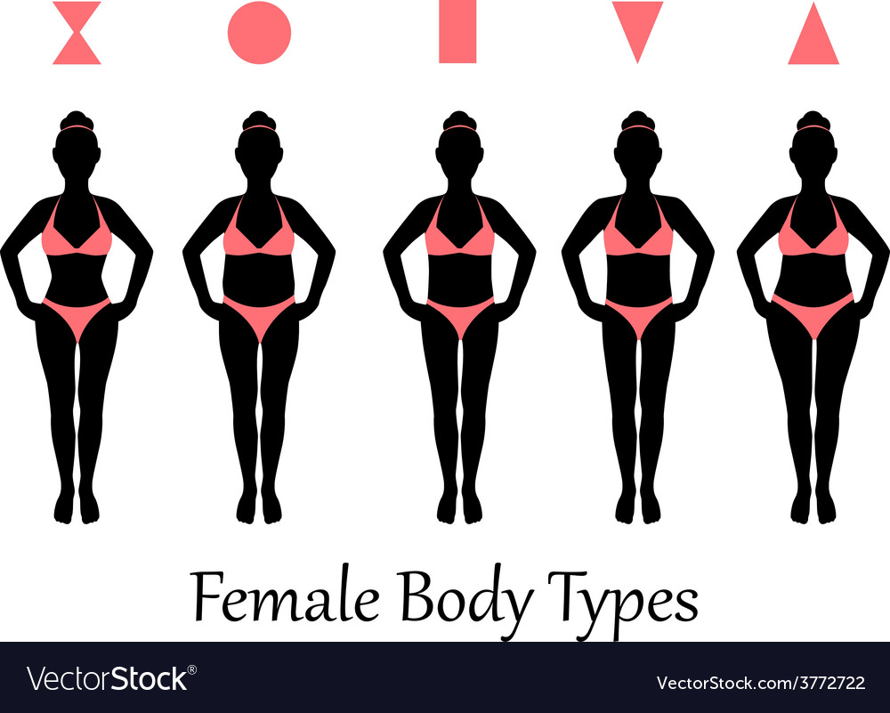 Female body types vector | Price: 1 Credit (USD $1)