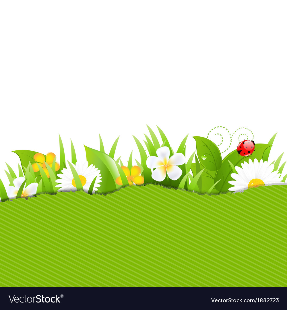 Green torn paper with flowers and grass vector | Price: 1 Credit (USD $1)