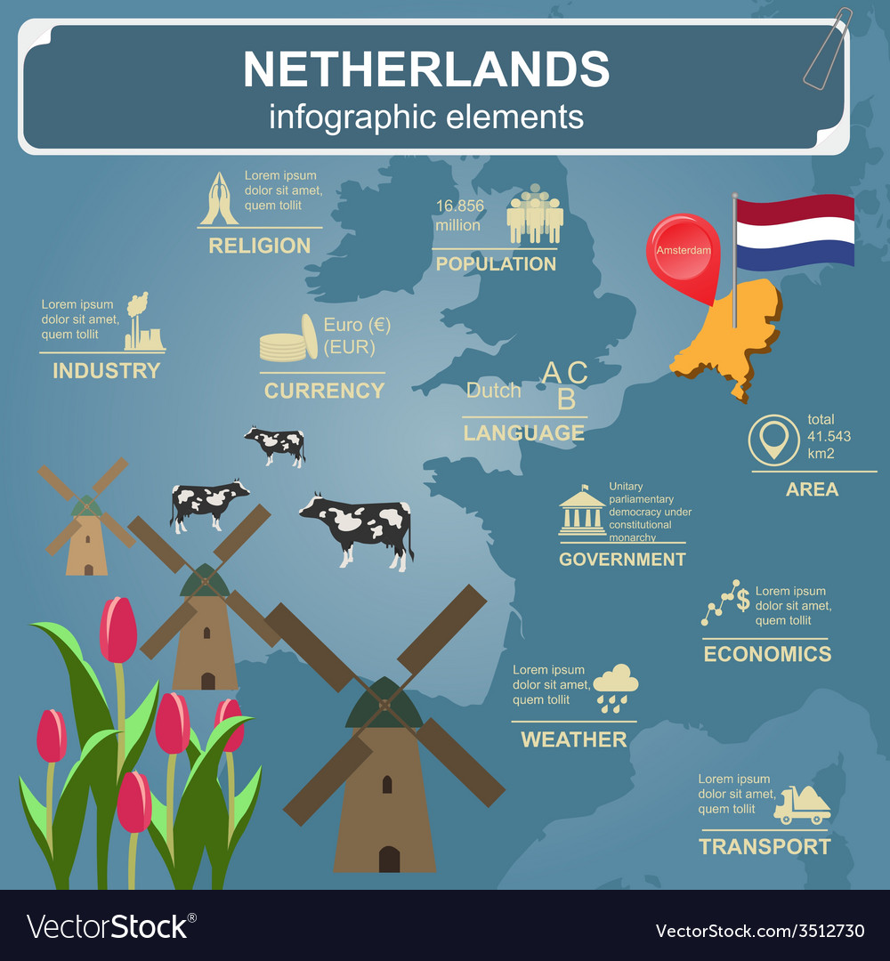 Netherlands infographics statistical data sights vector | Price: 1 Credit (USD $1)