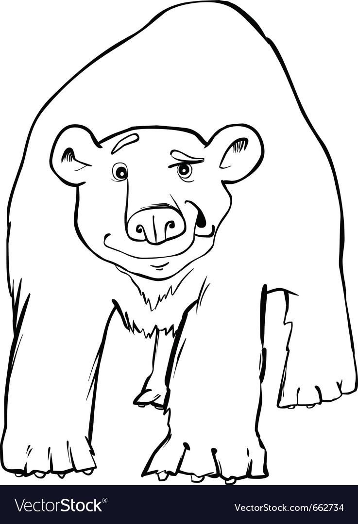Polar bear coloring page vector   Price: 1 Credit (USD $1)