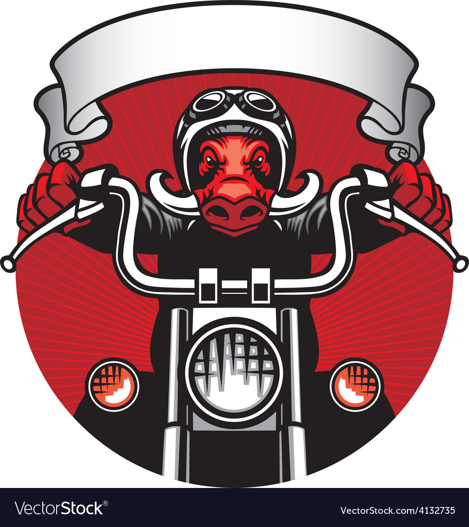 Wildhog biker vector