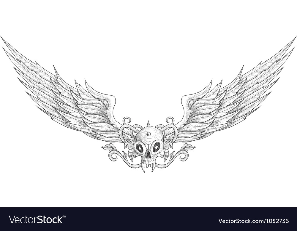 Skull with wings vector | Price: 1 Credit (USD $1)