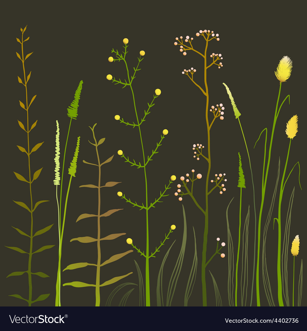 Wild field flowers and grass on black vector | Price: 1 Credit (USD $1)