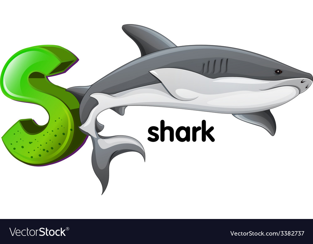 A letter s for shark vector | Price: 1 Credit (USD $1)