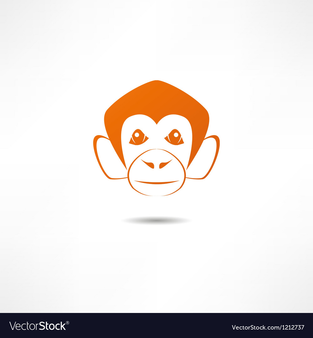 Monkey vector | Price: 1 Credit (USD $1)
