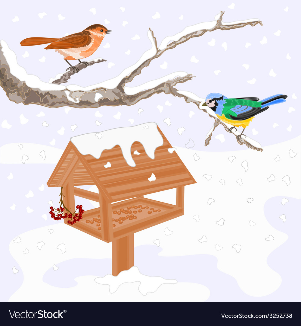 Birds titmouse warbler and feeder winter theme vector | Price: 1 Credit (USD $1)