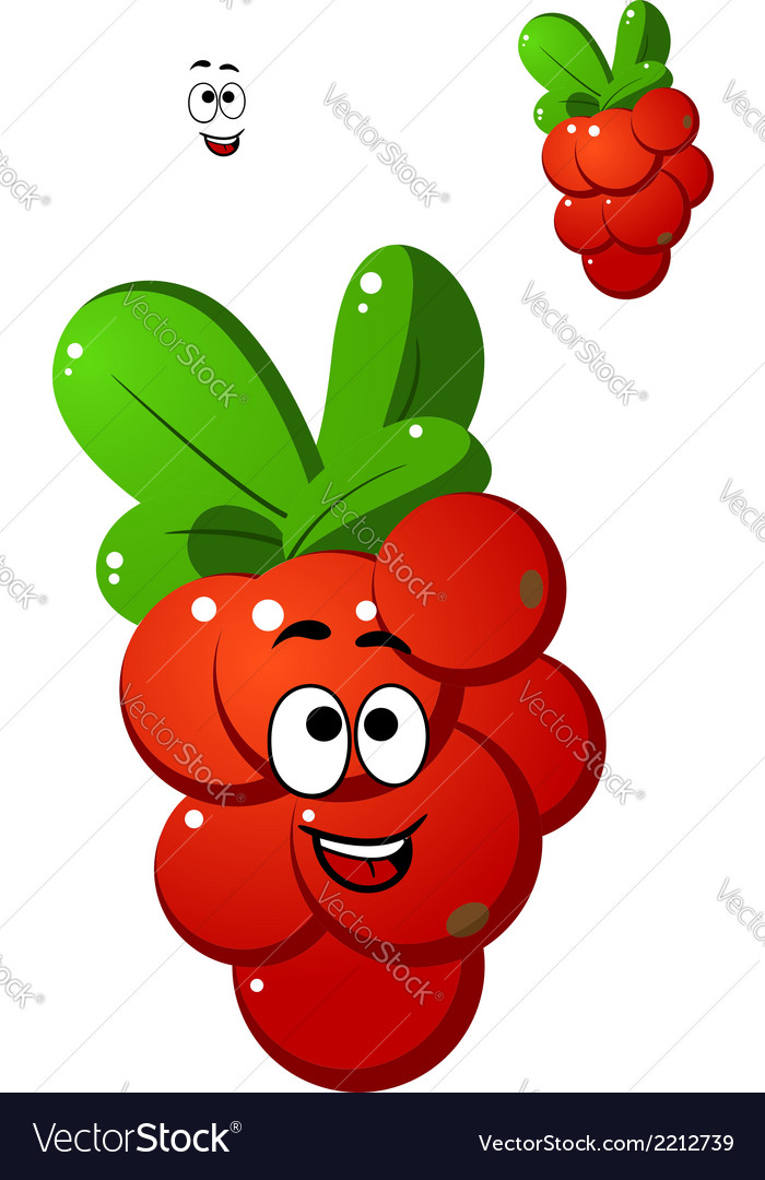 Red currant berries vector | Price: 1 Credit (USD $1)