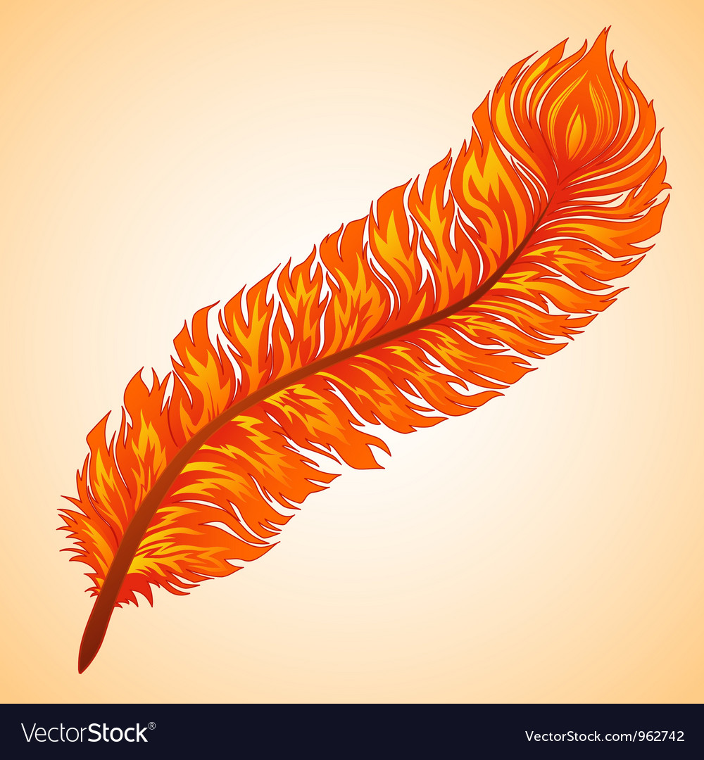 Fiery feather vector | Price: 1 Credit (USD $1)