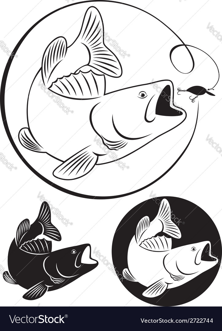 Fish bass vector | Price: 1 Credit (USD $1)