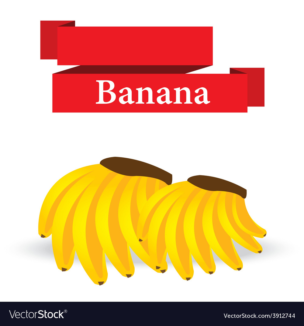 Fresh banana on white background vector | Price: 1 Credit (USD $1)