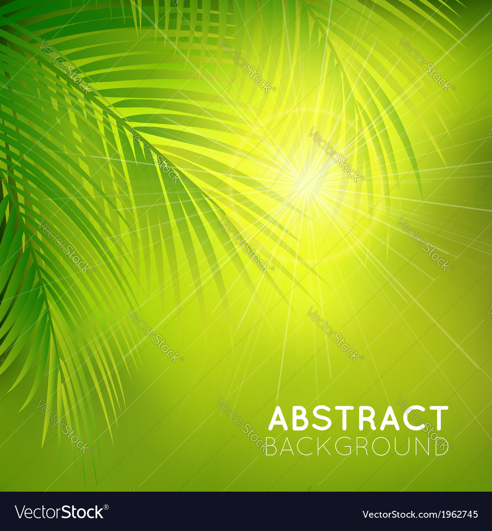 Background with palm branches vector | Price: 1 Credit (USD $1)
