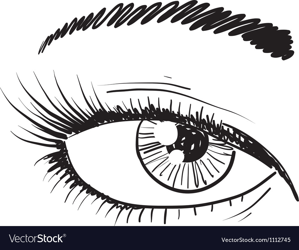 Doodle eye iris vector | Price: 1 Credit (USD $1)