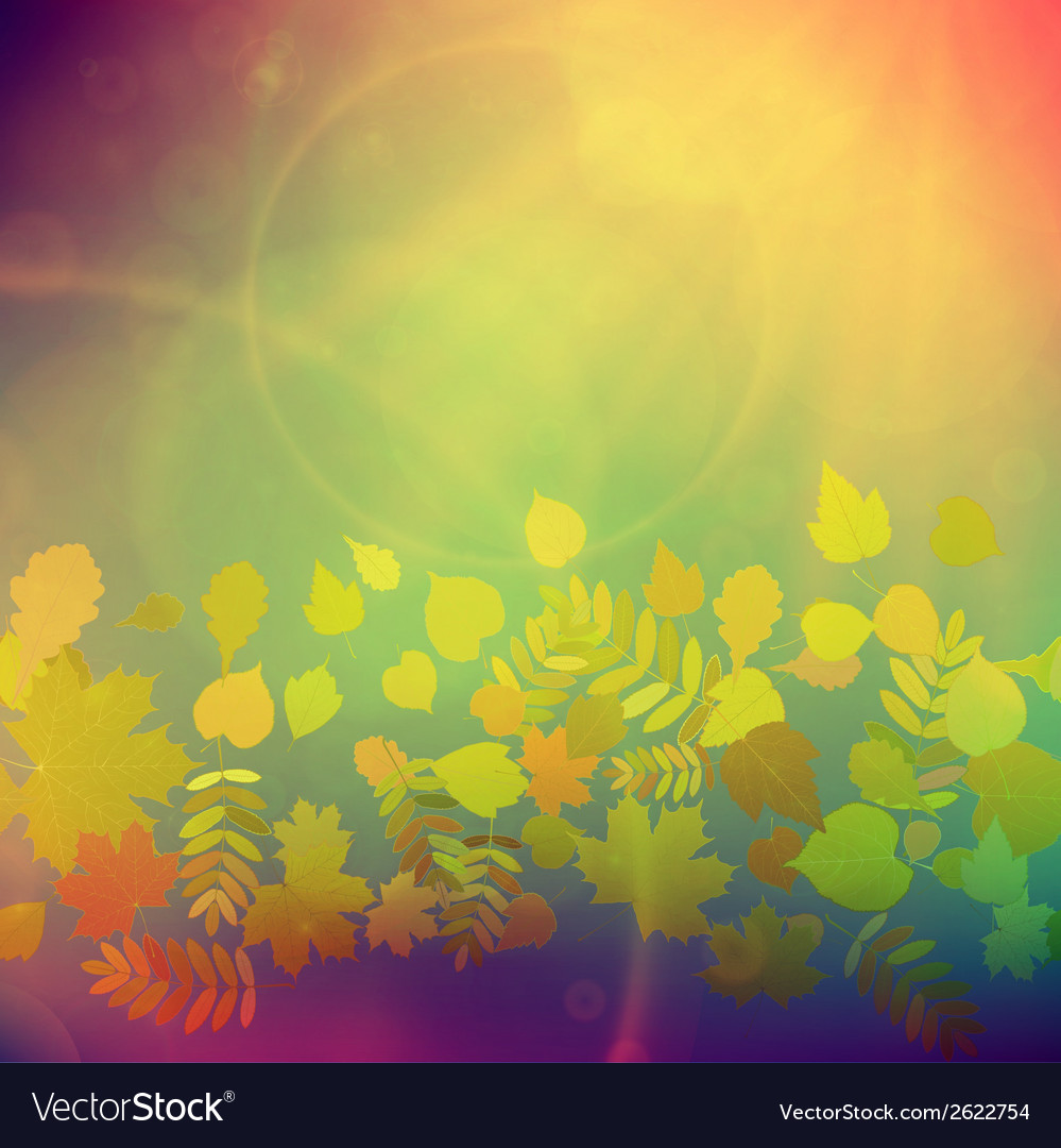 Autumn colorful red and yellow leaves vector | Price: 1 Credit (USD $1)