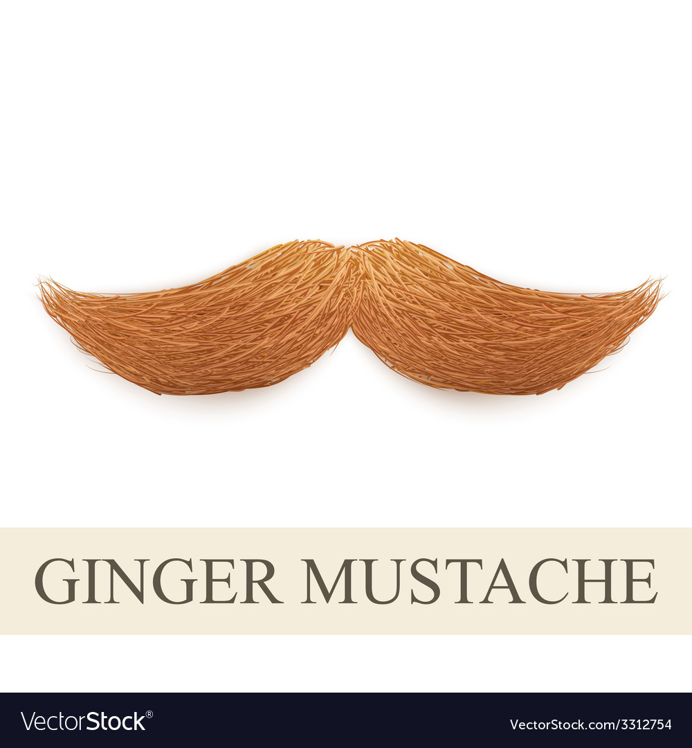 Realistic ginger vintage curly mustache vector | Price: 1 Credit (USD $1)