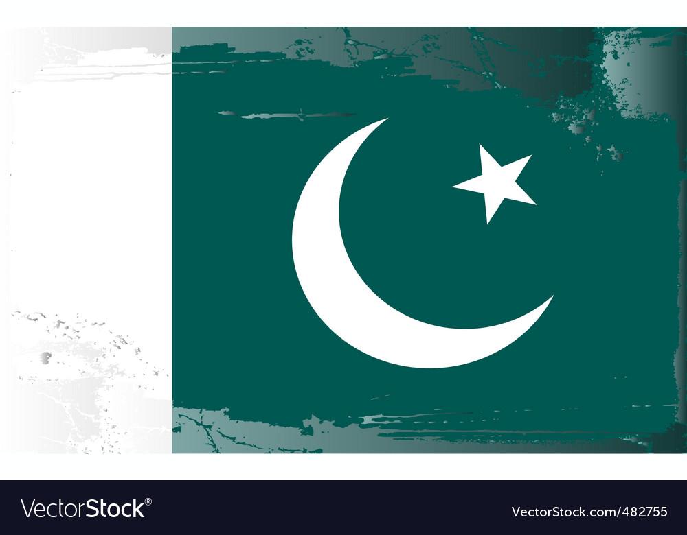 Pakistan national flag vector   Price: 1 Credit (USD $1)